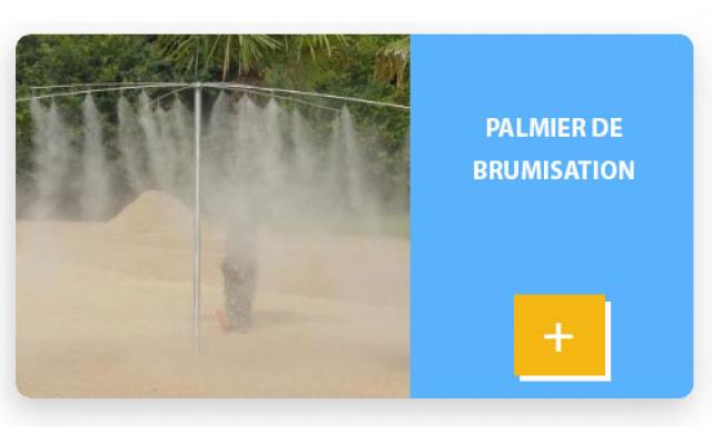 Palmier de brumisation